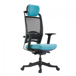 Ghế văn phòng cao cấp Budget Futra-01 có tựa đầu HOGVP074