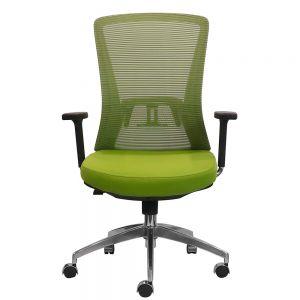 Ghế xoay văn phòng lưng lưới màu xanh Aloha 01 HOGVP103